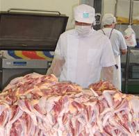 食鳥検査-輸入食品の検査